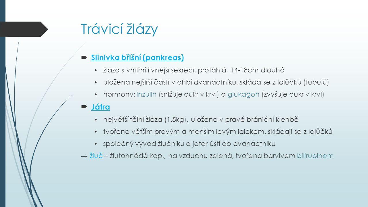 Trávicí žlázy  Slinivka břišní (pankreas) žláza s vnitřní i vnější sekrecí, protáhlá, 14-18cm dlouhá uložena nejširší částí v ohbí dvanáctníku, skládá se z lalůčků (tubulů) hormony: inzulin (snižuje cukr v krvi) a glukagon (zvyšuje cukr v krvi)  Játra největší tělní žláza (1,5kg), uložena v pravé brániční klenbě tvořena větším pravým a menším levým lalokem, skládají se z lalůčků společný vývod žlučníku a jater ústí do dvanáctníku → žluč – žlutohnědá kap., na vzduchu zelená, tvořena barvivem bilirubinem