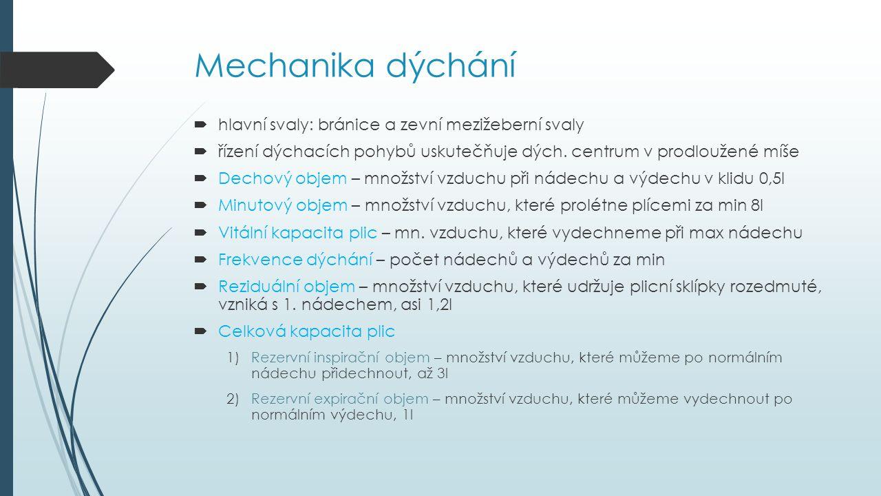 Mechanika dýchání  hlavní svaly: bránice a zevní mezižeberní svaly  řízení dýchacích pohybů uskutečňuje dých. centrum v prodloužené míše  Dechový o