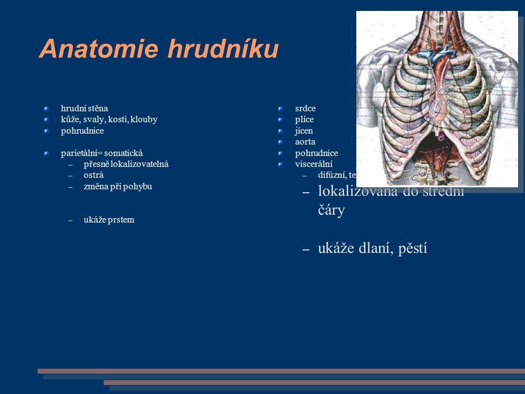 Anatomie hrudníku hrudní stěna kůže, svaly, kosti, klouby pohrudnice parietální= somatická – přesně lokalizovatelná – ostrá – změna při pohybu – ukáže prstem srdce plíce jícen aorta pohrudnice viscerální – difúzní, temná, neurčitě definovaná, – lokalizována do střední čáry – ukáže dlaní, pěstí