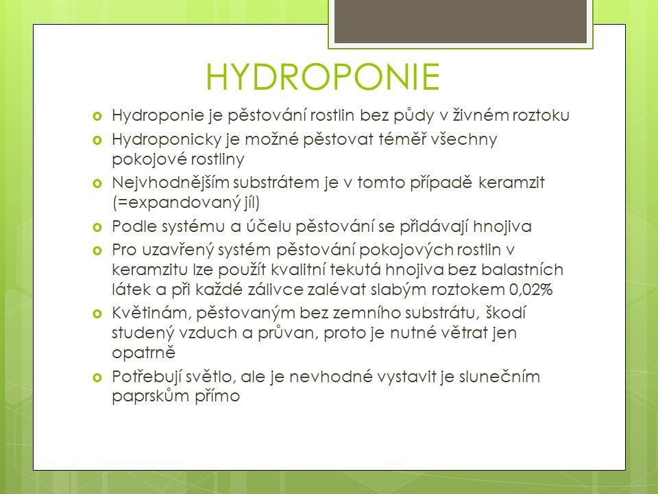 HYDROPONIE  Hydroponie je pěstování rostlin bez půdy v živném roztoku  Hydroponicky je možné pěstovat téměř všechny pokojové rostliny  Nejvhodnějším substrátem je v tomto případě keramzit (=expandovaný jíl)  Podle systému a účelu pěstování se přidávají hnojiva  Pro uzavřený systém pěstování pokojových rostlin v keramzitu lze použít kvalitní tekutá hnojiva bez balastních látek a při každé zálivce zalévat slabým roztokem 0,02%  Květinám, pěstovaným bez zemního substrátu, škodí studený vzduch a průvan, proto je nutné větrat jen opatrně  Potřebují světlo, ale je nevhodné vystavit je slunečním paprskům přímo