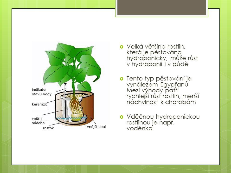  Velká většina rostlin, která je pěstována hydroponicky, může růst v hydroponii i v půdě  Tento typ pěstování je vynálezem Egypťanů Mezi výhody patří rychlejší růst rostlin, menší náchylnost k chorobám  Vděčnou hydroponickou rostlinou je např.