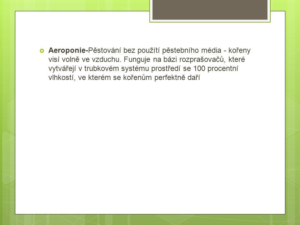  Aeroponie-Pěstování bez použítí pěstebního média - kořeny visí volně ve vzduchu.