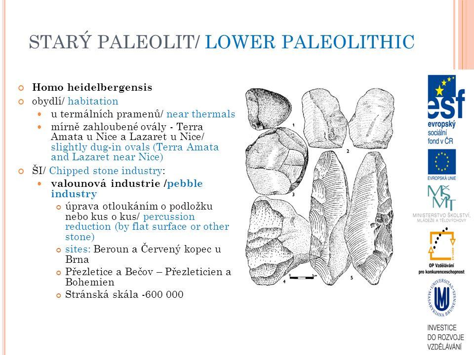 STARÝ PALEOLIT/ LOWER PALEOLITHIC Homo heidelbergensis obydlí/ habitation u termálních pramenů/ near thermals mírně zahloubené ovály - Terra Amata u N