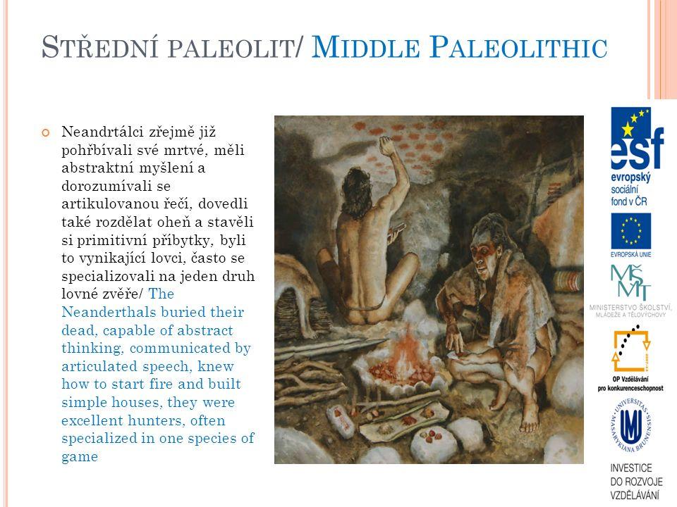S TŘEDNÍ PALEOLIT / M IDDLE P ALEOLITHIC Neandrtálci zřejmě již pohřbívali své mrtvé, měli abstraktní myšlení a dorozumívali se artikulovanou řečí, dovedli také rozdělat oheň a stavěli si primitivní příbytky, byli to vynikající lovci, často se specializovali na jeden druh lovné zvěře/ The Neanderthals buried their dead, capable of abstract thinking, communicated by articulated speech, knew how to start fire and built simple houses, they were excellent hunters, often specialized in one species of game