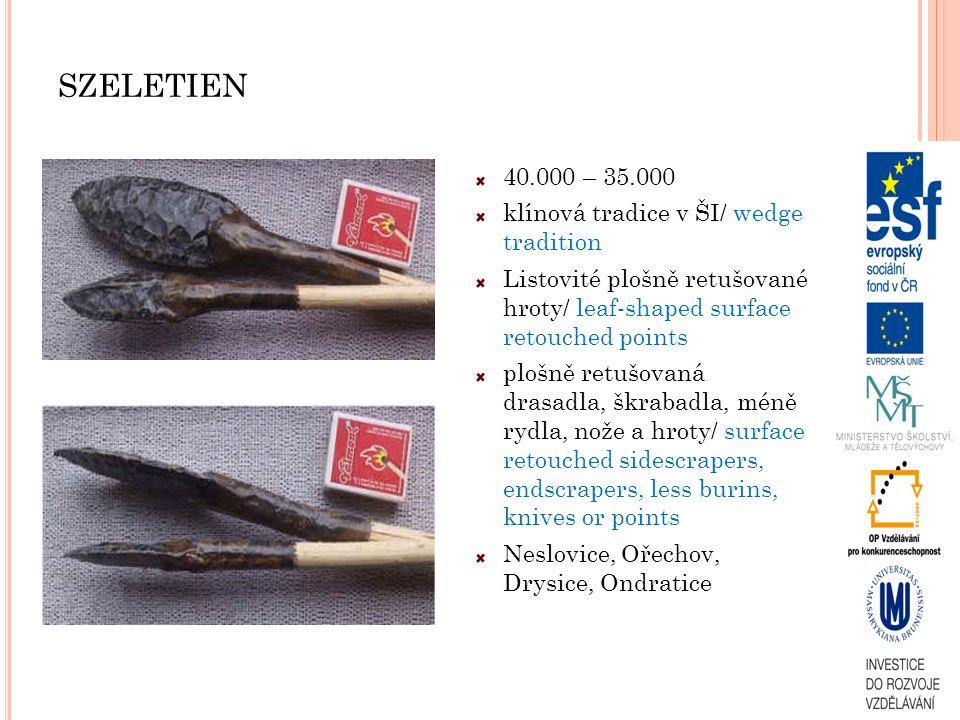 SZELETIEN 40.000 – 35.000 klínová tradice v ŠI/ wedge tradition Listovité plošně retušované hroty/ leaf-shaped surface retouched points plošně retušov