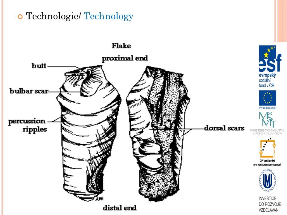 Technologie/ Technology