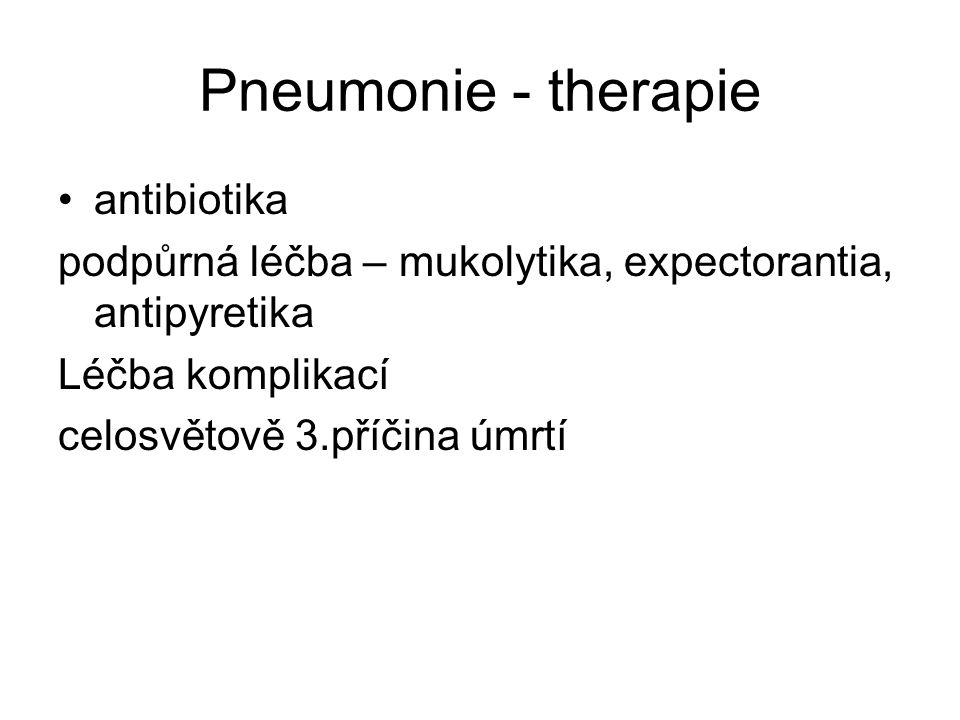 Pneumonie - therapie antibiotika podpůrná léčba – mukolytika, expectorantia, antipyretika Léčba komplikací celosvětově 3.příčina úmrtí