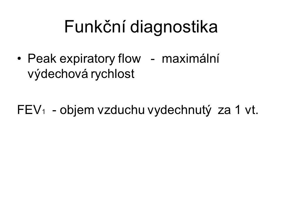 Funkční diagnostika Peak expiratory flow - maximální výdechová rychlost FEV 1 - objem vzduchu vydechnutý za 1 vt.