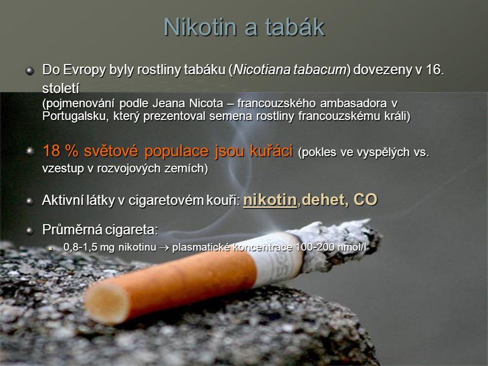 Nikotin a tabák Do Evropy byly rostliny tabáku (Nicotiana tabacum) dovezeny v 16.