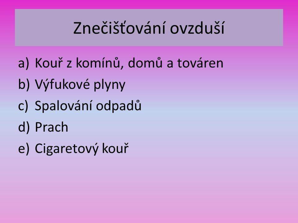Znečišťování ovzduší a)Kouř z komínů, domů a továren b)Výfukové plyny c)Spalování odpadů d)Prach e)Cigaretový kouř
