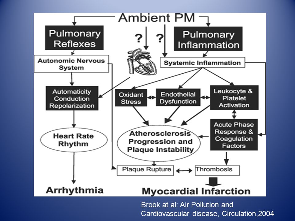 Brook at al: Air Pollution and Cardiovascular disease, Circulation,2004