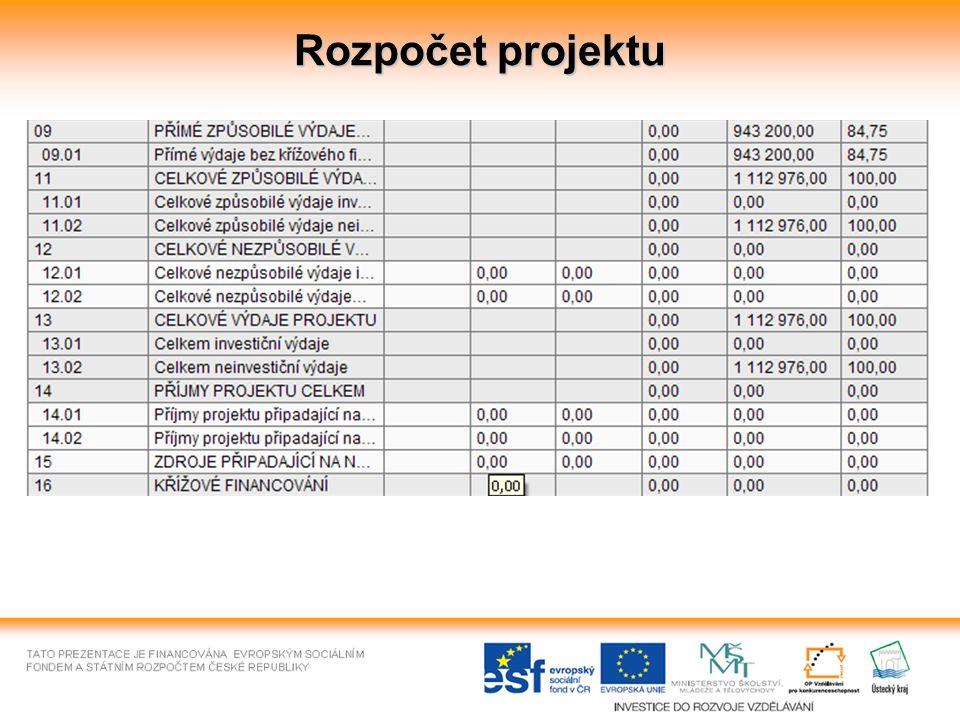 Rozpočet projektu