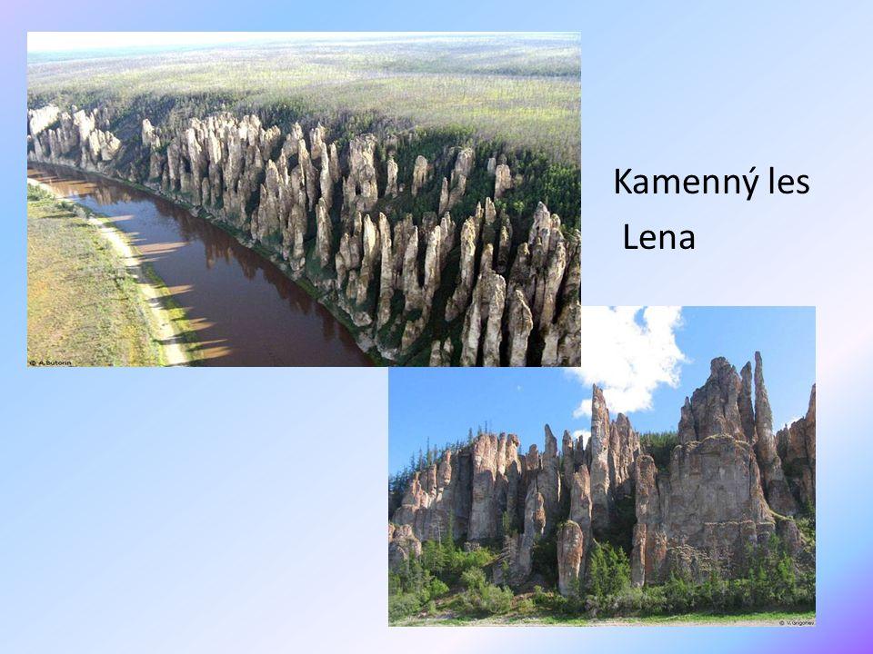 Kamenný les Lena