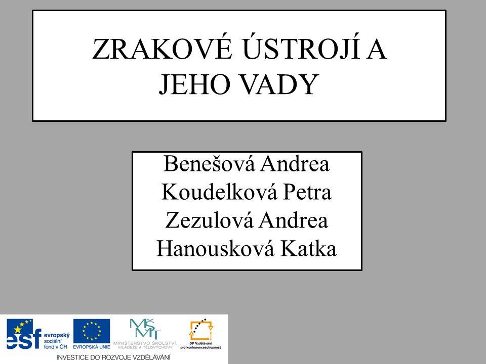 ZRAKOVÉ ÚSTROJÍ A JEHO VADY Benešová Andrea Koudelková Petra Zezulová Andrea Hanousková Katka
