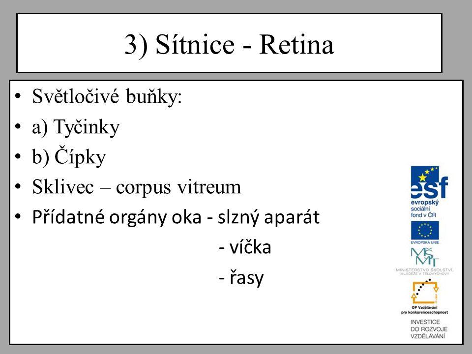 3) Sítnice - Retina Světločivé buňky: a) Tyčinky b) Čípky Sklivec – corpus vitreum Přídatné orgány oka - slzný aparát - víčka - řasy