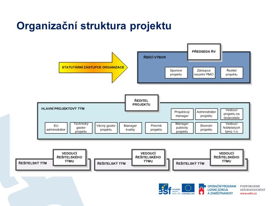 Projektové role  Zastoupení projektových rolí v rámci organizační struktury projektu vždy závisí na:  typu projektu  rozsahu projektu  složitosti projektu  Projektové role mohou být zajišťovány pracovníkem ze 100 % jeho kapacity, ale nemusí to být pravidlem.
