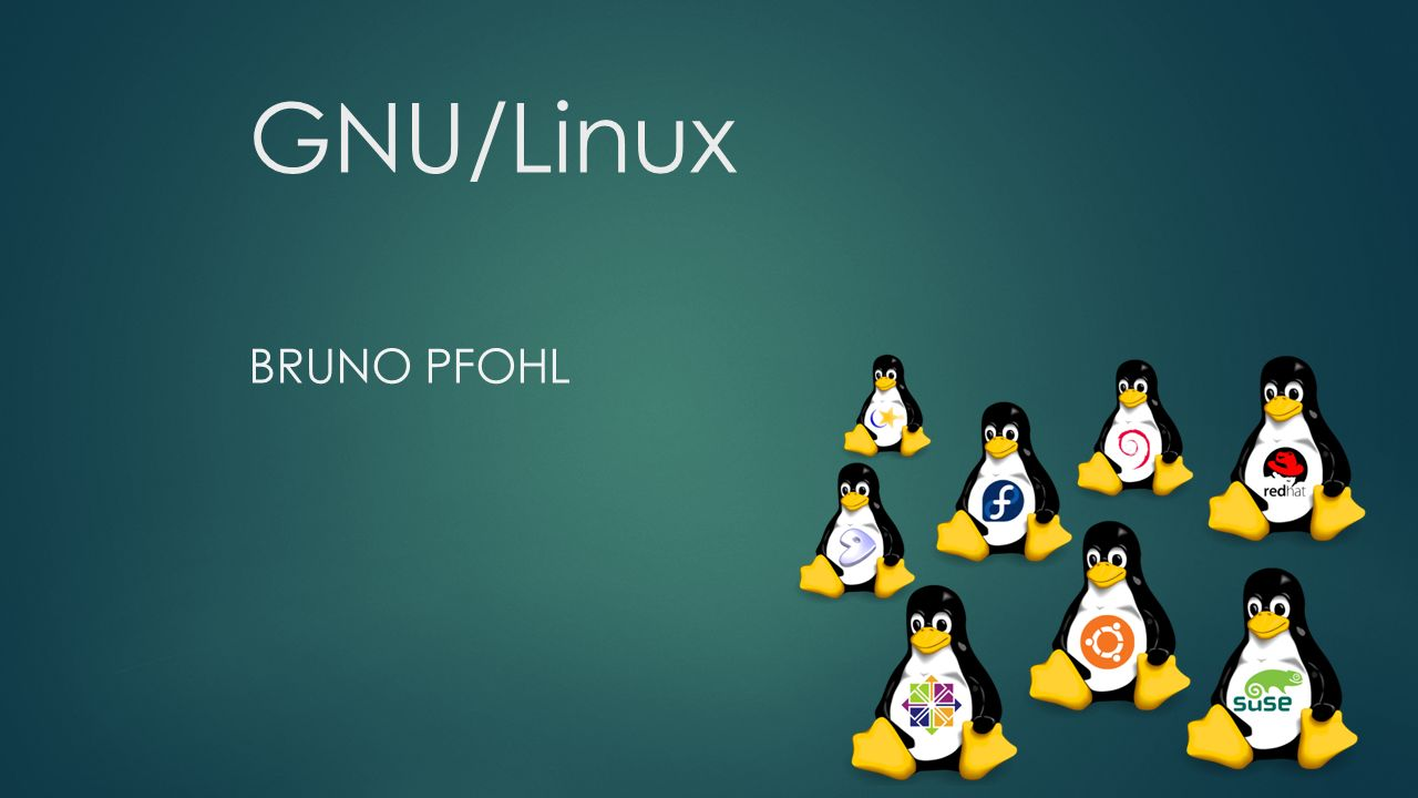 GNU/Linux BRUNO PFOHL
