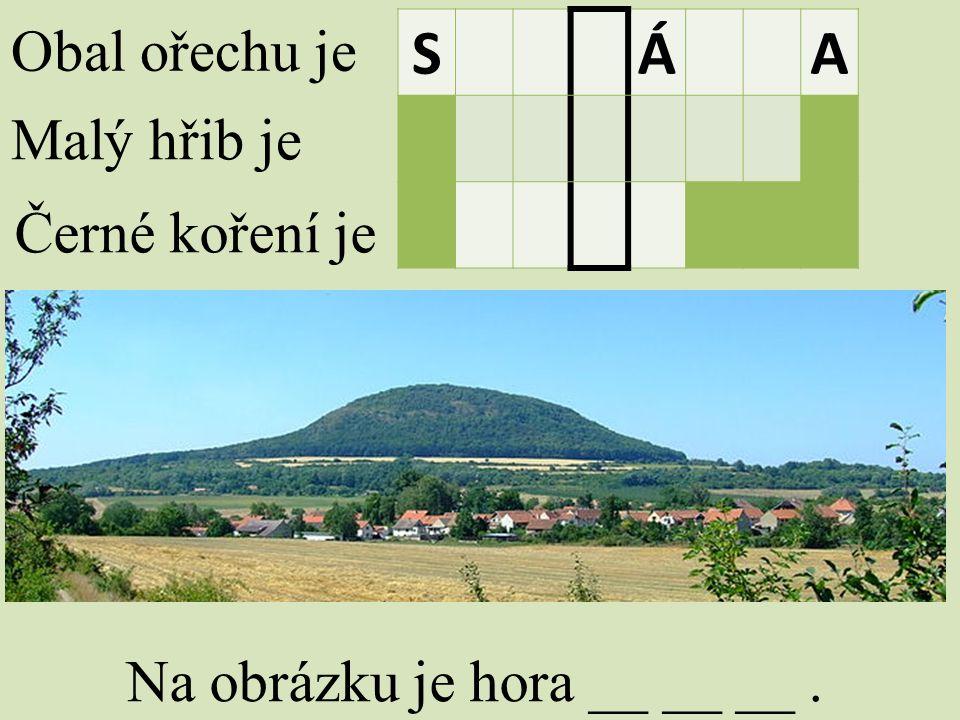Obal ořechu je Malý hřib je Černé koření je SÁA Na obrázku je hora __ __ __.