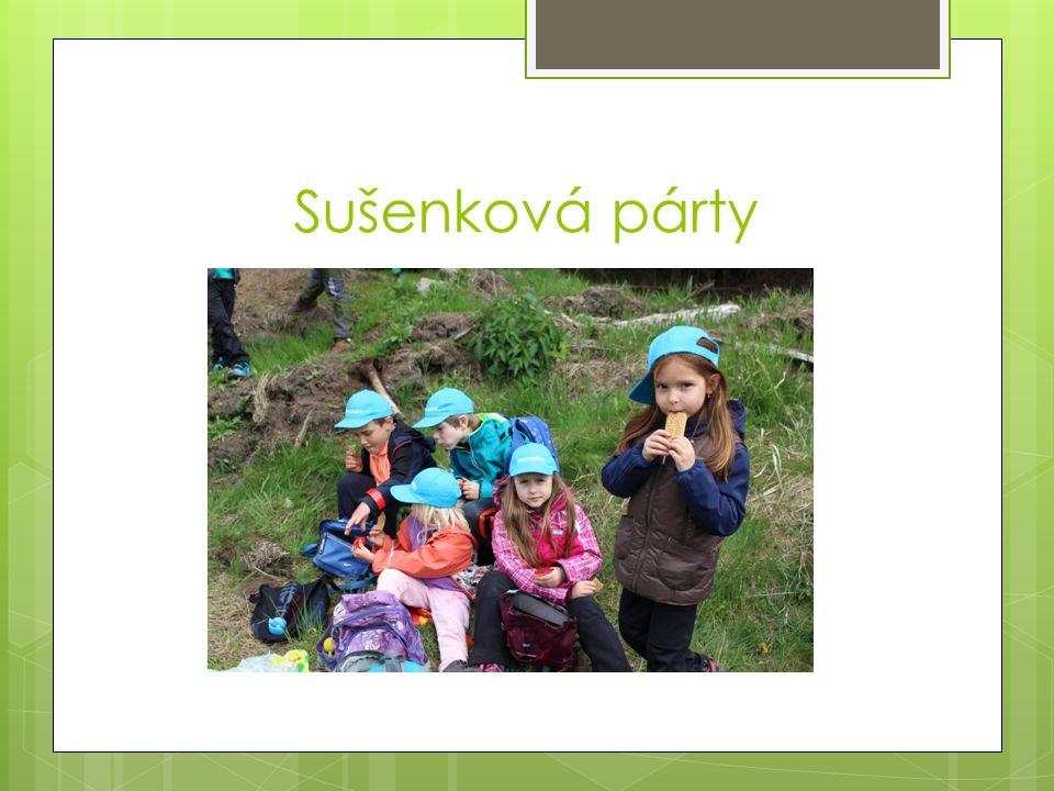 Sušenková párty