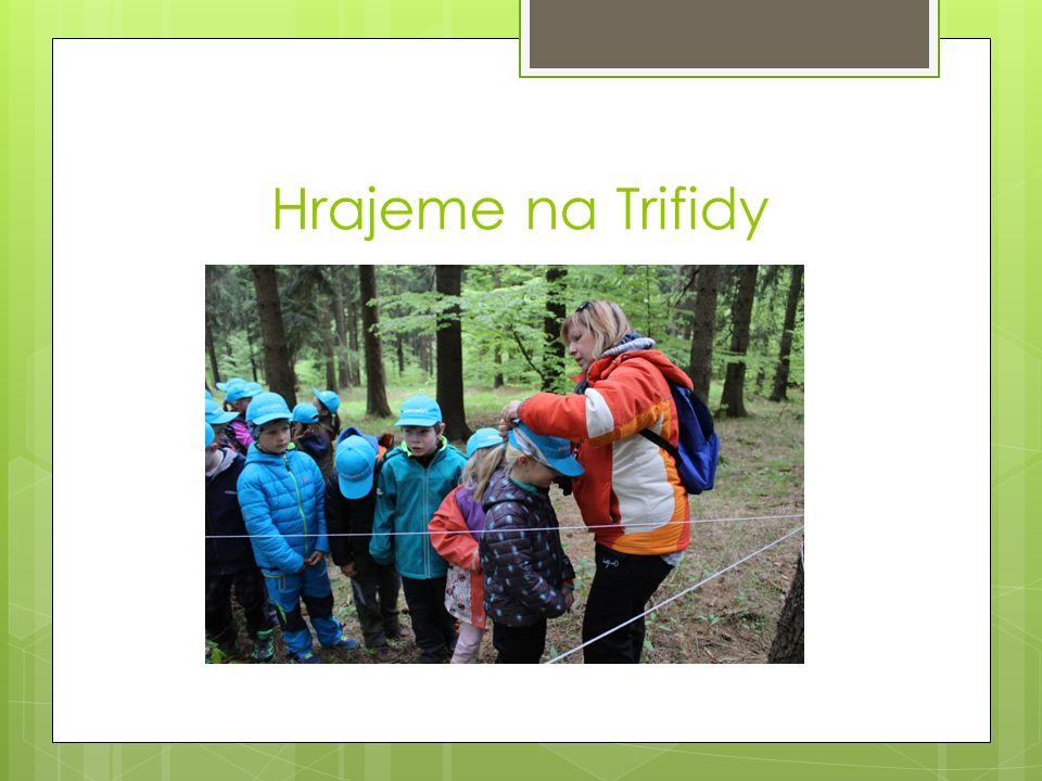 Hrajeme na Trifidy