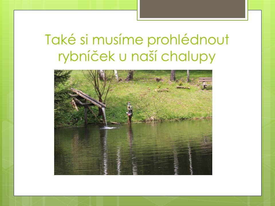 Také si musíme prohlédnout rybníček u naší chalupy