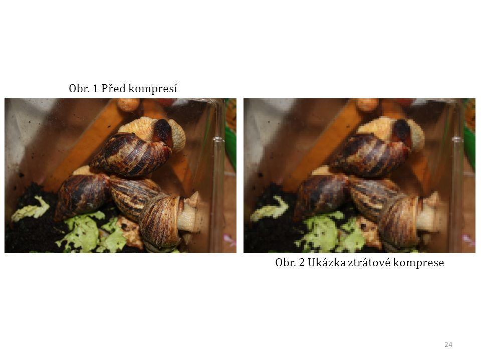 Obr. 2 Ukázka ztrátové komprese Obr. 1 Před kompresí 24