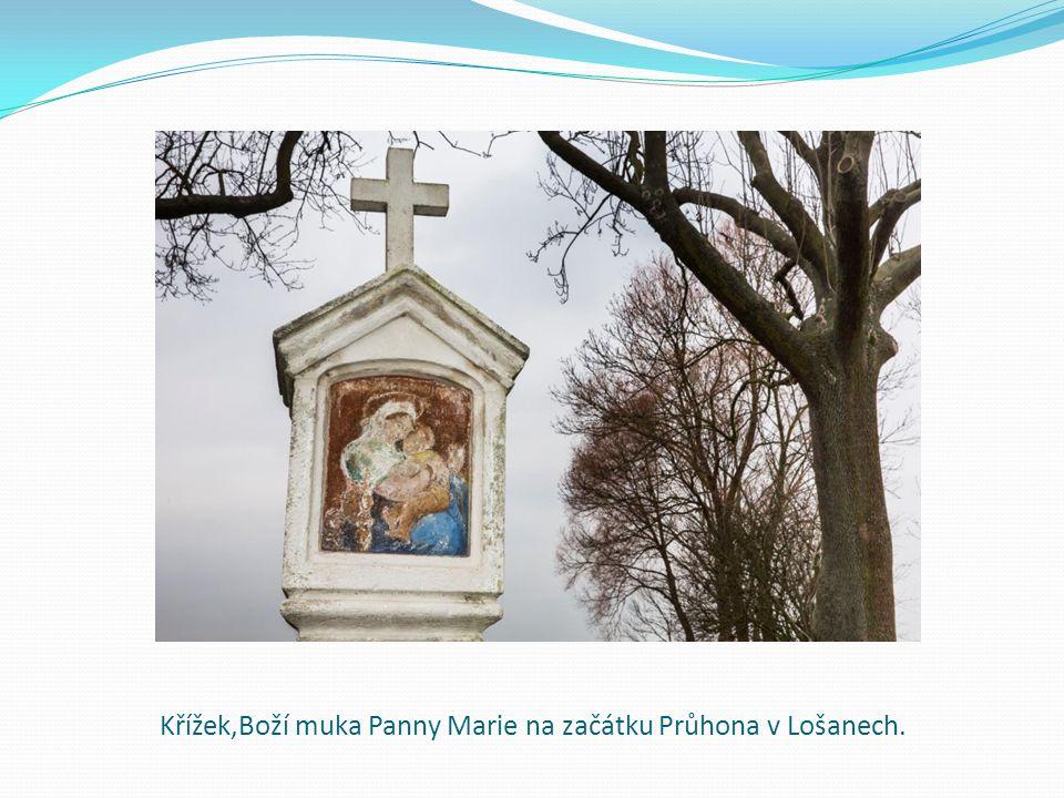 Křížek,Boží muka Panny Marie na začátku Průhona v Lošanech.