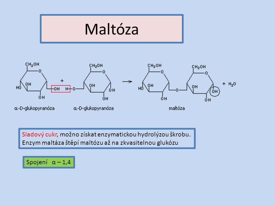 Maltóza Sladový cukr, možno získat enzymatickou hydrolýzou škrobu.