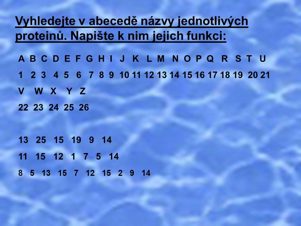 Vyhledejte v abecedě názvy jednotlivých proteinů. Napište k nim jejich funkci: A B C D E F G H I J K L M N O P Q R S T U 1 2 3 4 5 6 7 8 9 10 11 12 13
