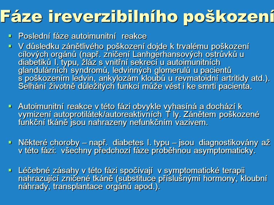 Fáze ireverzibilního poškození  Poslední fáze autoimunitní reakce  V důsledku zánětlivého poškození dojde k trvalému poškození cílových orgánů (např.