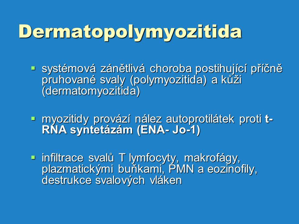 Dermatopolymyozitida  systémová zánětlivá choroba postihující příčně pruhované svaly (polymyozitida) a kůži (dermatomyozitida)  myozitidy provází nález autoprotilátek proti t- RNA syntetázám (ENA- Jo-1)  infiltrace svalů T lymfocyty, makrofágy, plazmatickými buňkami, PMN a eozinofily, destrukce svalových vláken