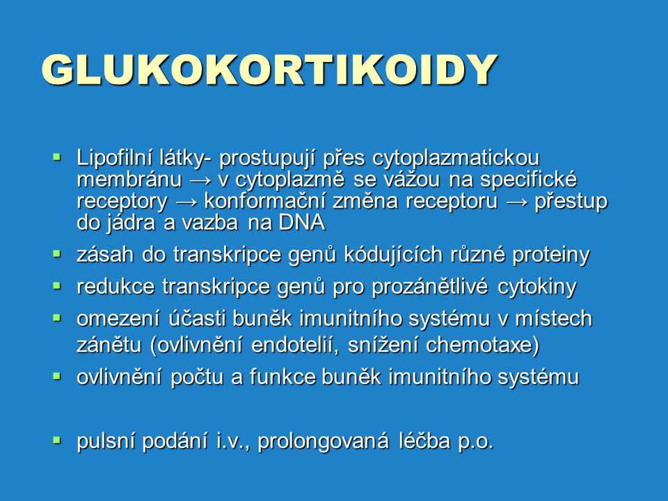 GLUKOKORTIKOIDY  Lipofilní látky- prostupují přes cytoplazmatickou membránu → v cytoplazmě se vážou na specifické receptory → konformační změna receptoru → přestup do jádra a vazba na DNA  zásah do transkripce genů kódujících různé proteiny  redukce transkripce genů pro prozánětlivé cytokiny  omezení účasti buněk imunitního systému v místech zánětu (ovlivnění endotelií, snížení chemotaxe)  ovlivnění počtu a funkce buněk imunitního systému  pulsní podání i.v., prolongovaná léčba p.o.