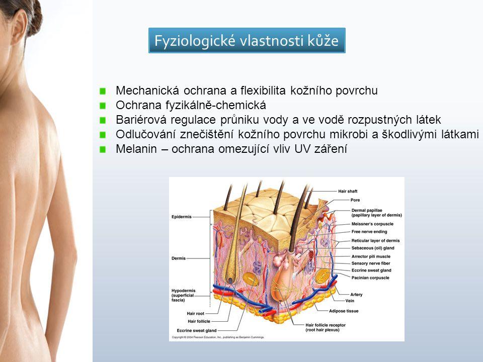 Mechanická ochrana a flexibilita kožního povrchu Ochrana fyzikálně-chemická Bariérová regulace průniku vody a ve vodě rozpustných látek Odlučování znečištění kožního povrchu mikrobi a škodlivými látkami Melanin – ochrana omezující vliv UV záření