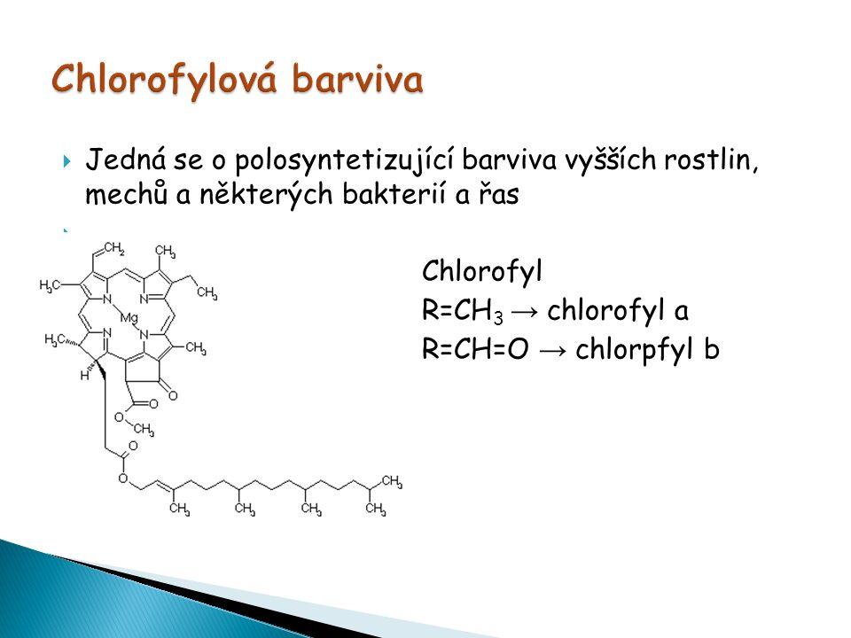  Jedná se o polosyntetizující barviva vyšších rostlin, mechů a některých bakterií a řas   Chlorofyl  R=CH 3 → chlorofyl a  R=CH=O → chlorpfyl b