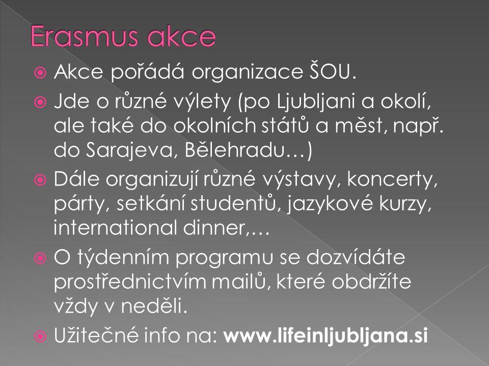  Akce pořádá organizace ŠOU.