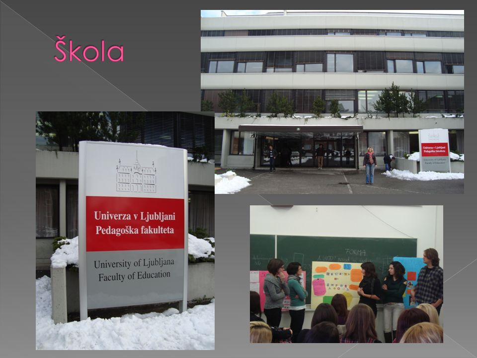  Výuka ve slovinštině  Převažují osobní konzultace s profesory v anglickém jazyce.