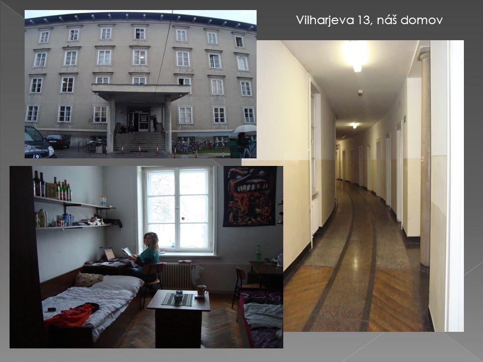 Vilharjeva 13, náš domov