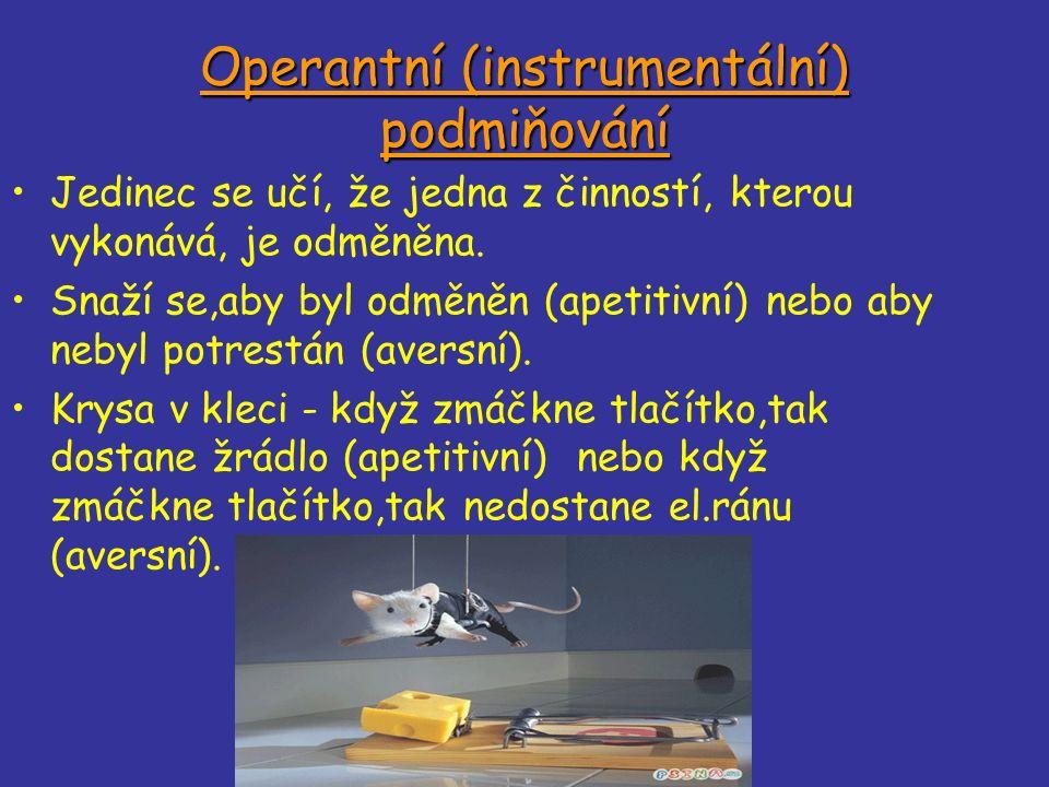 Operantní (instrumentální) podmiňování Jedinec se učí, že jedna z činností, kterou vykonává, je odměněna.
