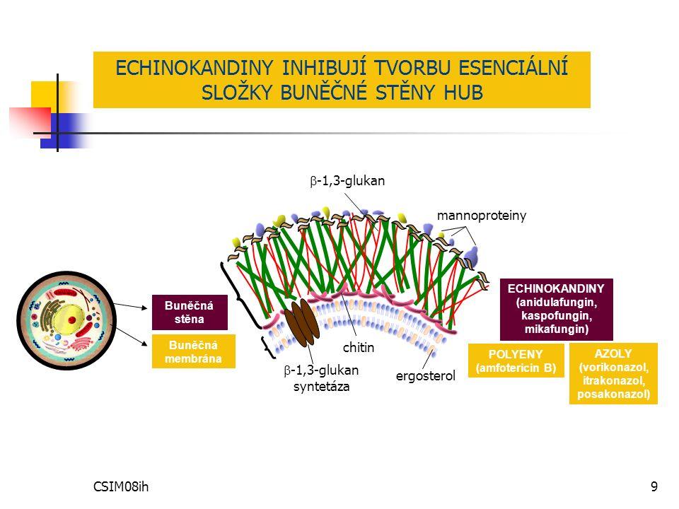 CSIM08ih9 Buněčná membrána Buněčná stěna POLYENY (amfotericin B) AZOLY (vorikonazol, itrakonazol, posakonazol) ECHINOKANDINY (anidulafungin, kaspofungin, mikafungin) ergosterol chitin  -1,3-glukan syntetáza  -1,3-glukan mannoproteiny ECHINOKANDINY INHIBUJÍ TVORBU ESENCIÁLNÍ SLOŽKY BUNĚČNÉ STĚNY HUB