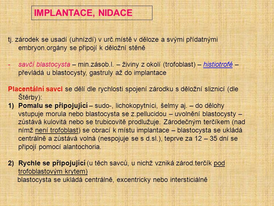 IMPLANTACE, NIDACE tj. zárodek se usadí (uhnízdí) v urč.místě v děloze a svými přídatnými embryon.orgány se připojí k děložní stěně -savčí blastocysta