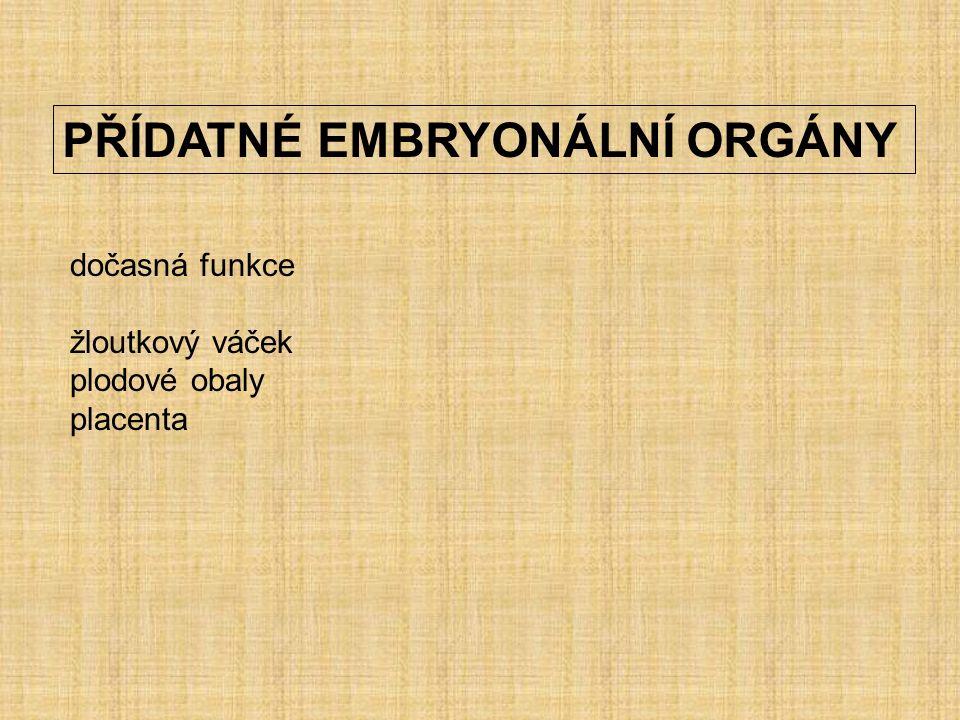 PŘÍDATNÉ EMBRYONÁLNÍ ORGÁNY dočasná funkce žloutkový váček plodové obaly placenta