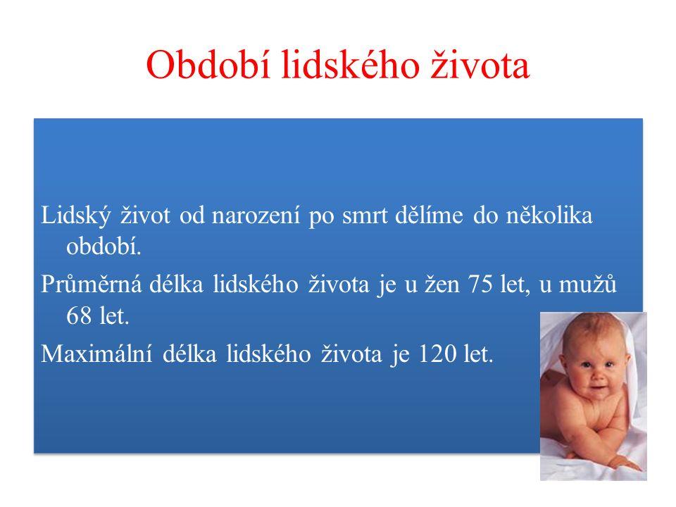 Období lidského života Lidský život od narození po smrt dělíme do několika období. Průměrná délka lidského života je u žen 75 let, u mužů 68 let. Maxi