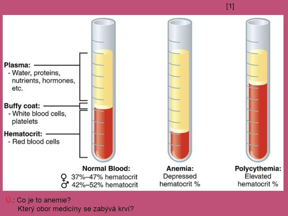 [1] Ú.: Co je to anemie Který obor medicíny se zabývá krví