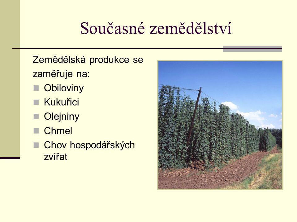 Současné zemědělství Zemědělská produkce se zaměřuje na: Obiloviny Kukuřici Olejniny Chmel Chov hospodářských zvířat