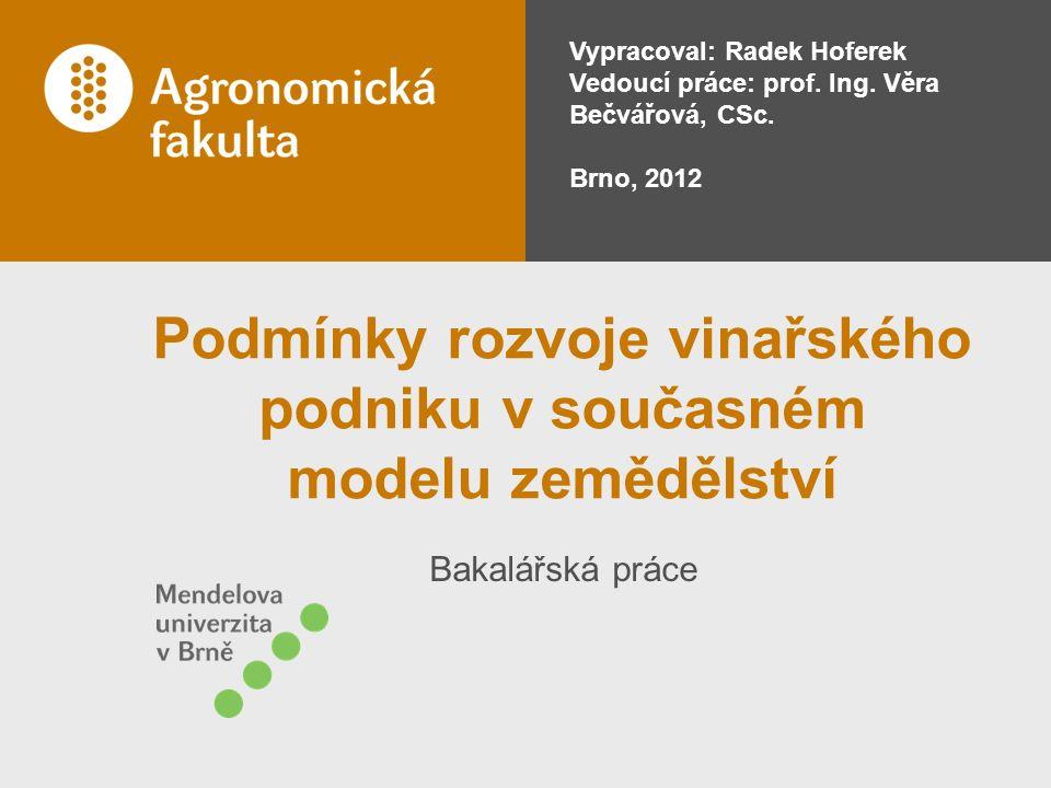 Bakalářská práce Vypracoval: Radek Hoferek Vedoucí práce: prof.