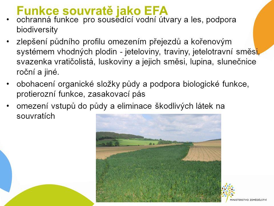 Funkce souvratě jako EFA ochranná funkce pro sousedící vodní útvary a les, podpora biodiversity zlepšení půdního profilu omezením přejezdů a kořenovým systémem vhodných plodin - jeteloviny, traviny, jetelotravní směsi, svazenka vratičolistá, luskoviny a jejich směsi, lupina, slunečnice roční a jiné.