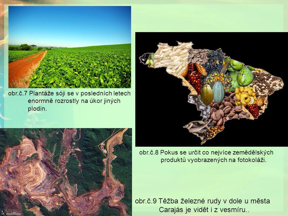 obr.č.8 Pokus se určit co nejvíce zemědělských produktů vyobrazených na fotokoláži.