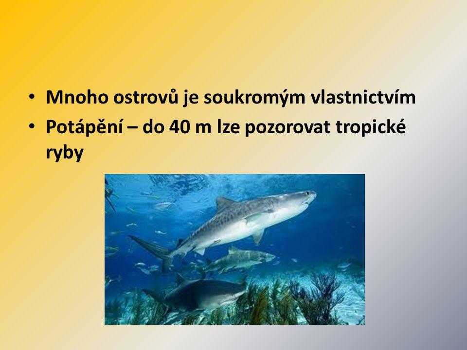 Mnoho ostrovů je soukromým vlastnictvím Potápění – do 40 m lze pozorovat tropické ryby
