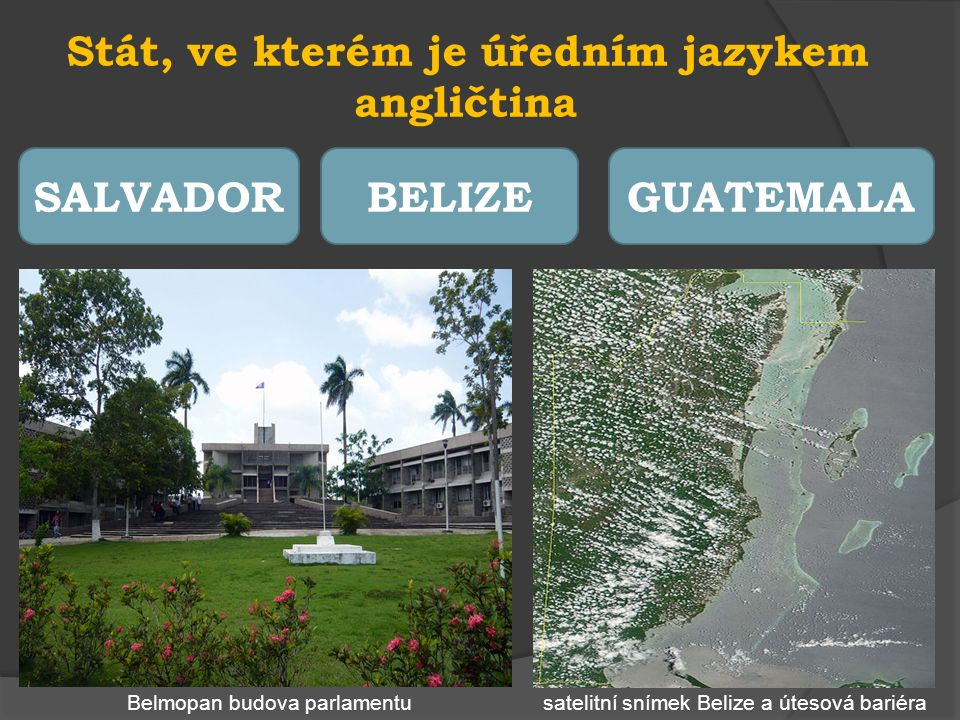 Podnebí typické pro oblast Střední Ameriky MÍRNÉTROPICKÉPOLÁRNÍ tropický deštný les jaguár