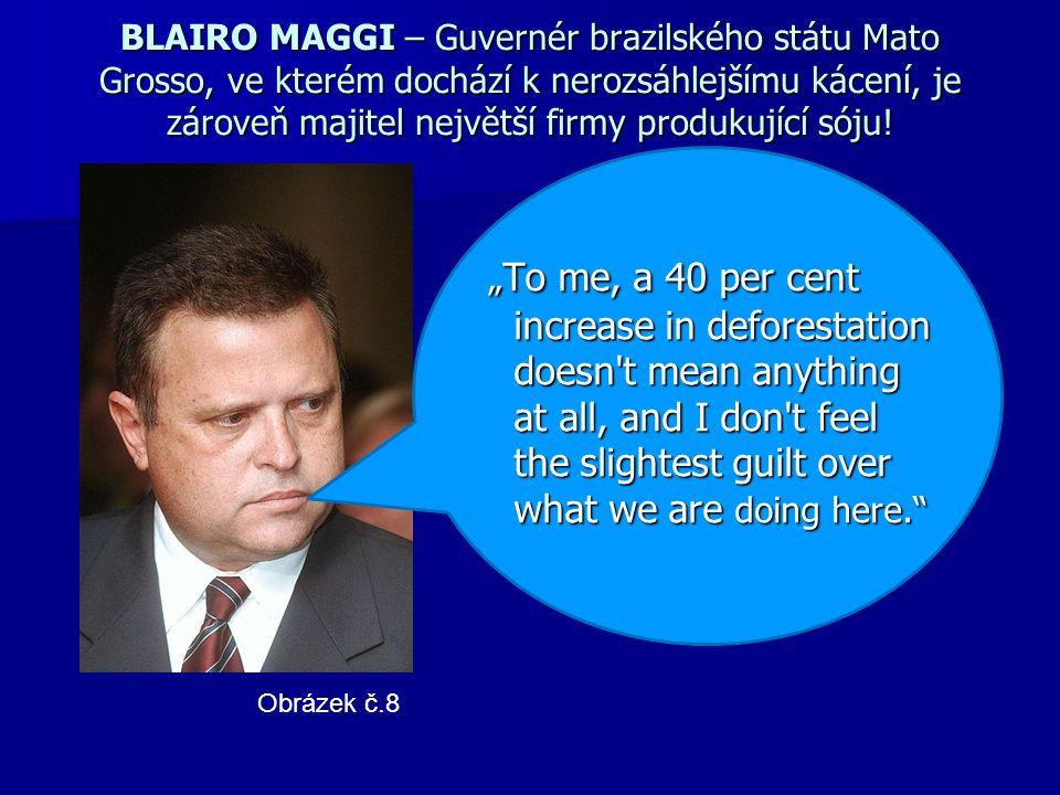 BLAIRO MAGGI – Guvernér brazilského státu Mato Grosso, ve kterém dochází k nerozsáhlejšímu kácení, je zároveň majitel největší firmy produkující sóju.